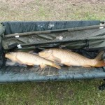 CarpQuest Colorado Chatfield Reservoir Common Carp Double