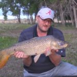 John Early Morning Common Carp